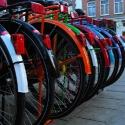 bike_colorfender