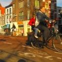 bike_kidback2