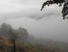 misty_view_2