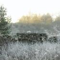 frozenvalley2
