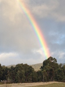 Where there's rain, there's usually rainbows!