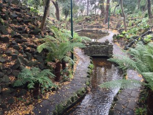 Melbourne Botanical Gardens, Fern Gully