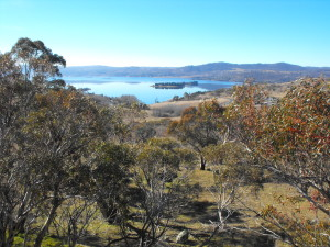 Overlooking Lake Jindabyne